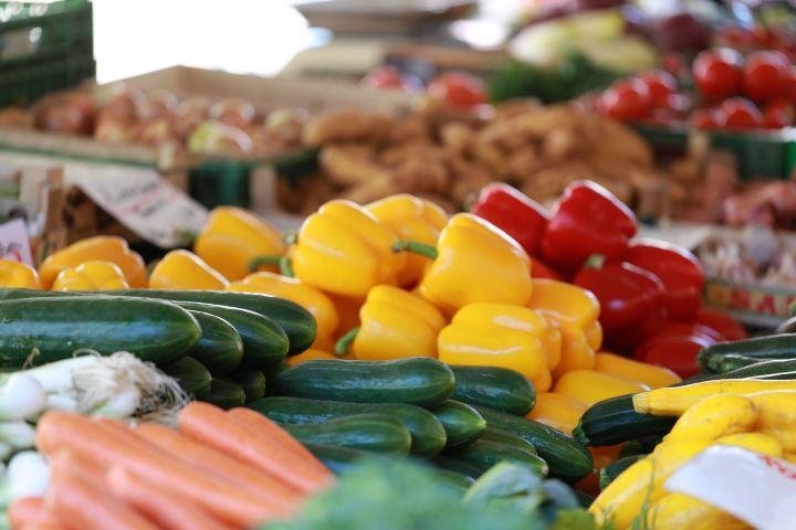 Россельхознадзор подозревает страны ЕС в возе санкционных овощей и фруктов в РФ